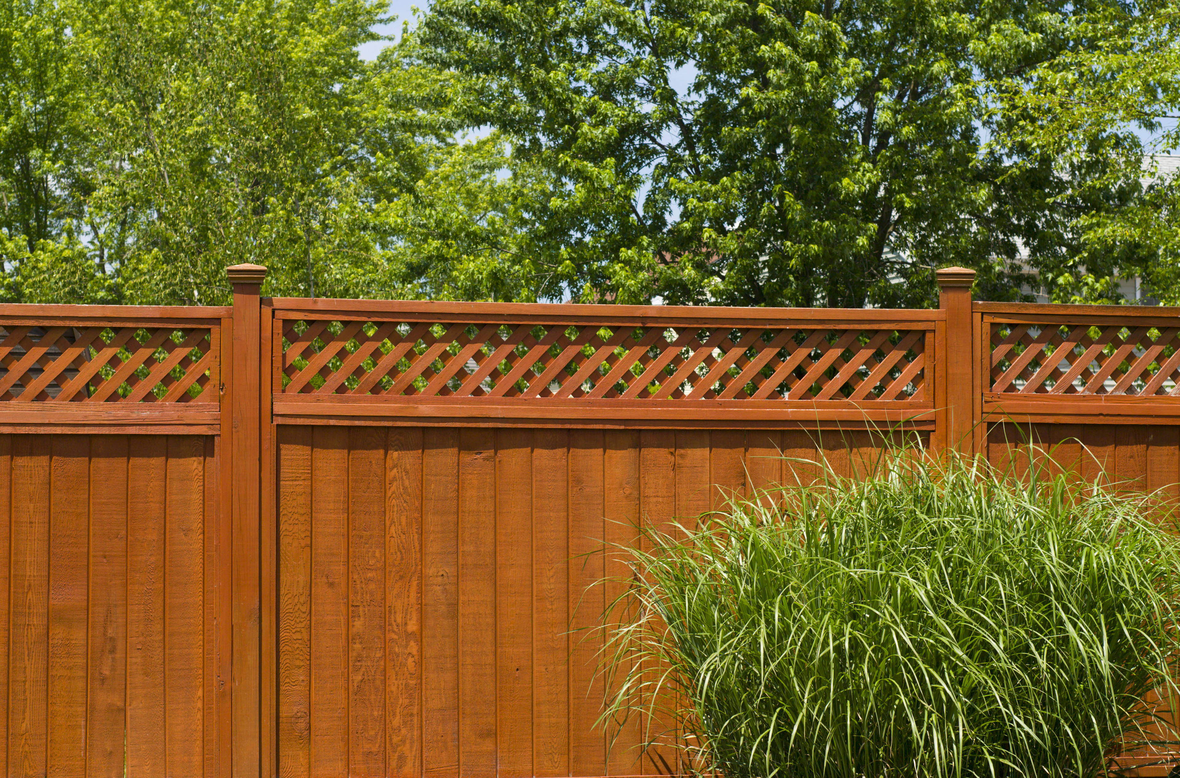 Types of fences for homes - What Types Of Wood Are For Norfolk Fences Hercules